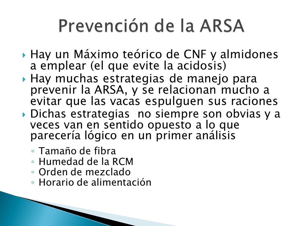 Prevención de la ARSA Hay un Máximo teórico de CNF y almidones a emplear (el que evite la acidosis)