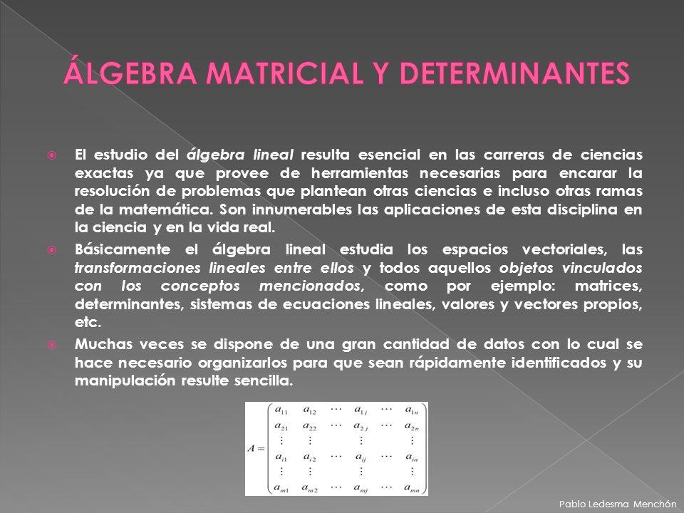 ÁLGEBRA MATRICIAL Y DETERMINANTES