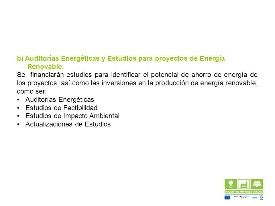 b) Auditorías Energéticas y Estudios para proyectos de Energía Renovable.