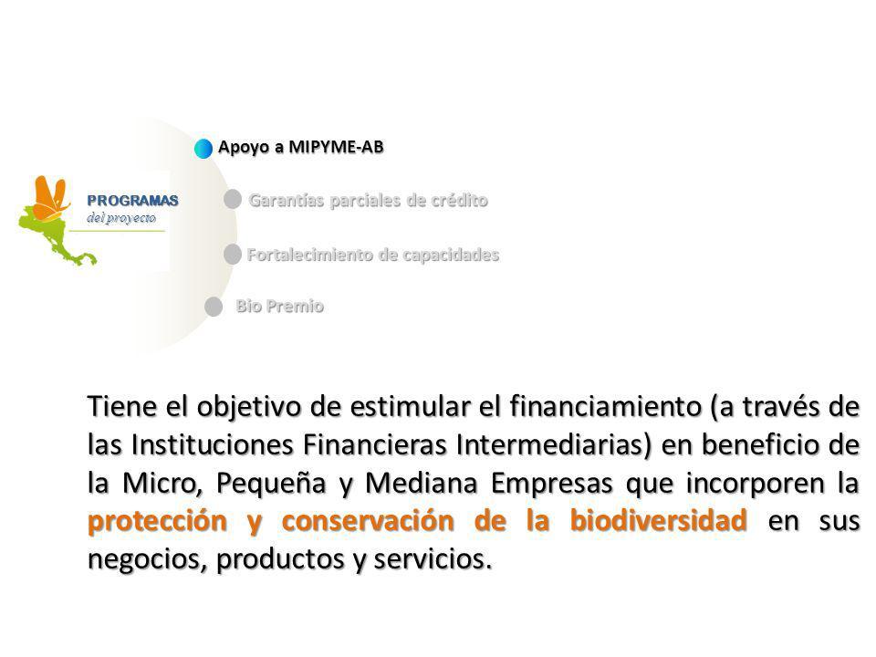 Apoyo a MIPYME-AB Garantías parciales de crédito. PROGRAMAS. del proyecto. Fortalecimiento de capacidades.