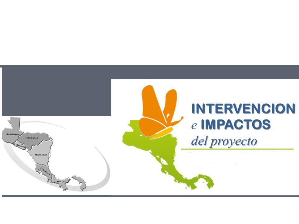 INTERVENCION e IMPACTOS del proyecto