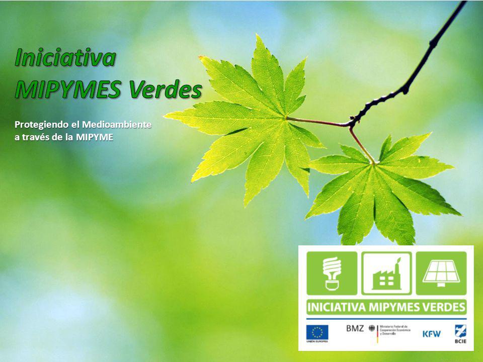 Iniciativa MIPYMES Verdes Protegiendo el Medioambiente