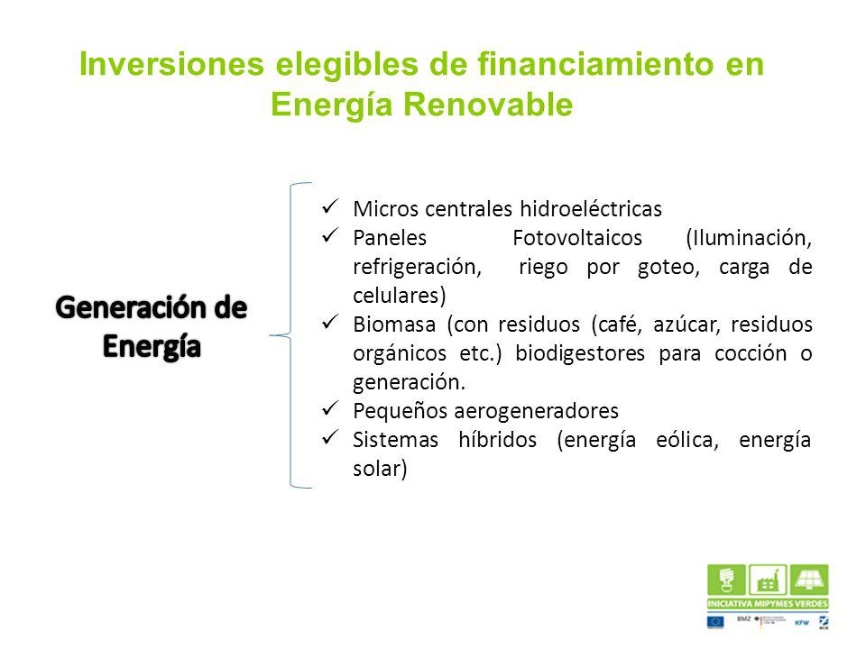 Inversiones elegibles de financiamiento en Energía Renovable