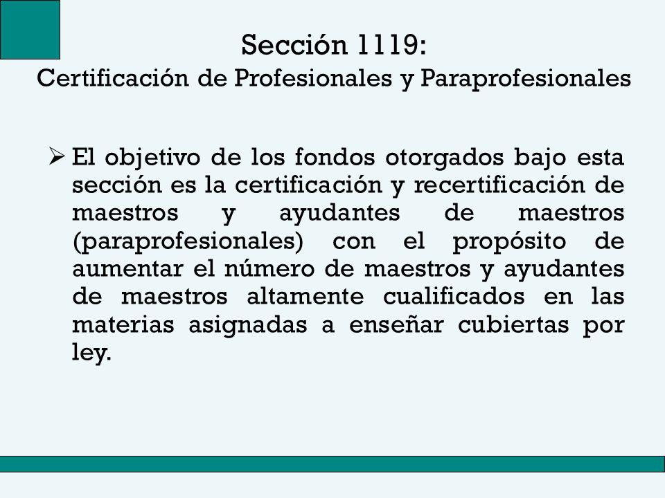Sección 1119: Certificación de Profesionales y Paraprofesionales