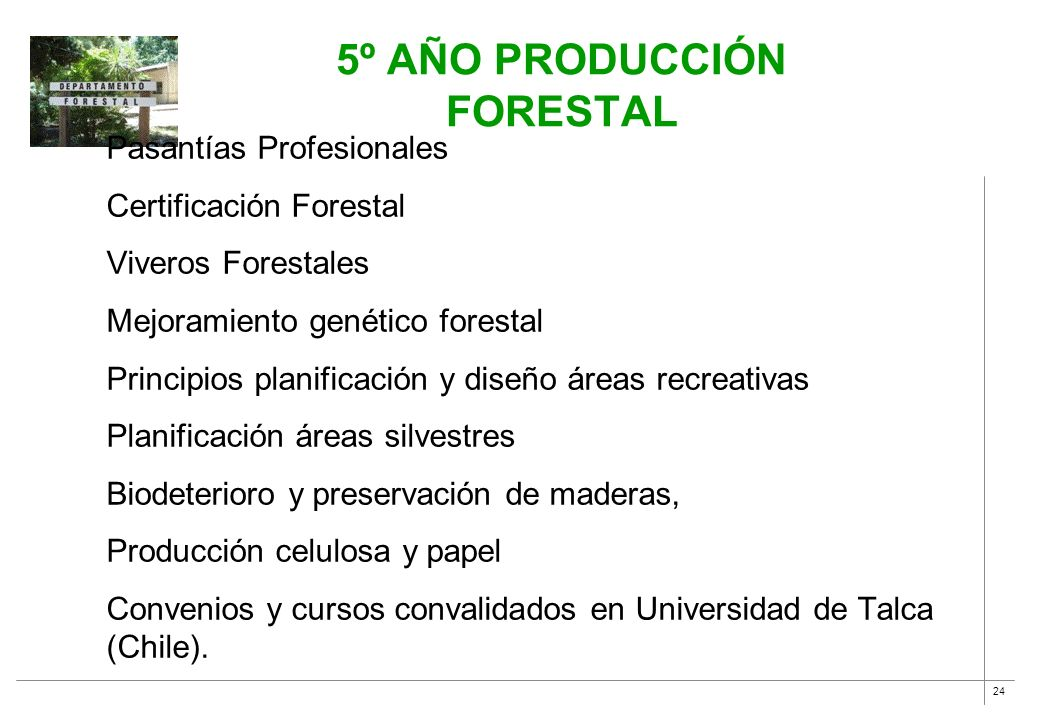 5º año Producción Forestal