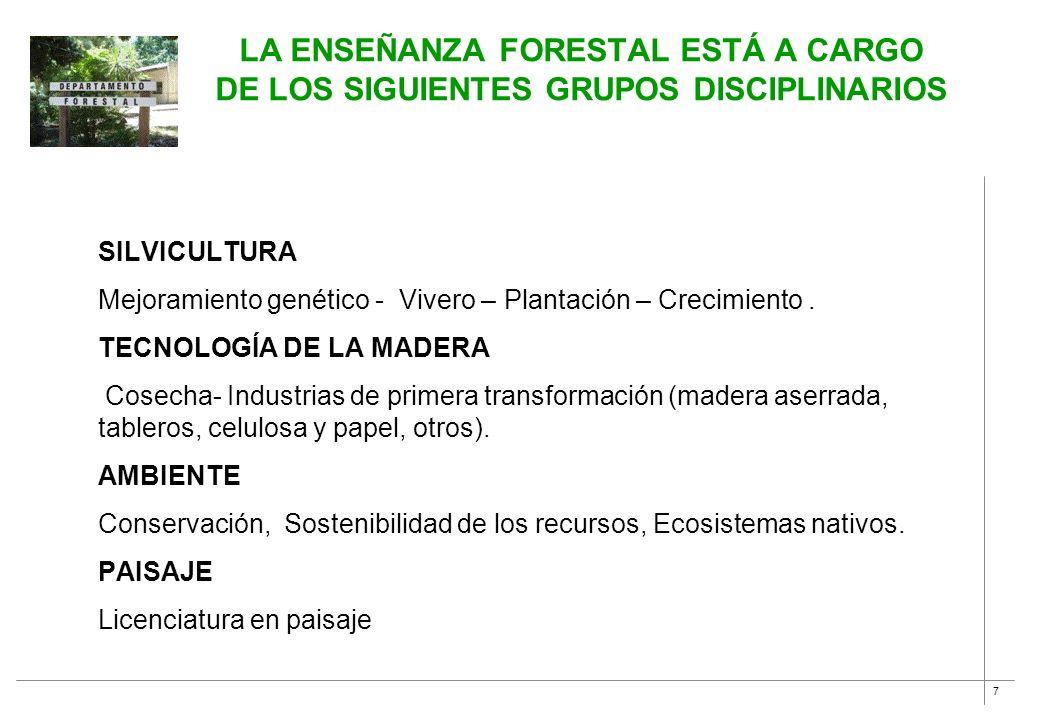 La enseñanza forestal está a cargo de los siguientes grupos disciplinarios