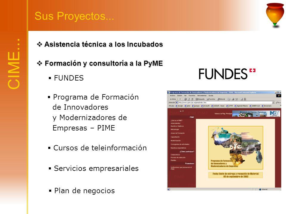 CIME... Sus Proyectos... Asistencia técnica a los Incubados