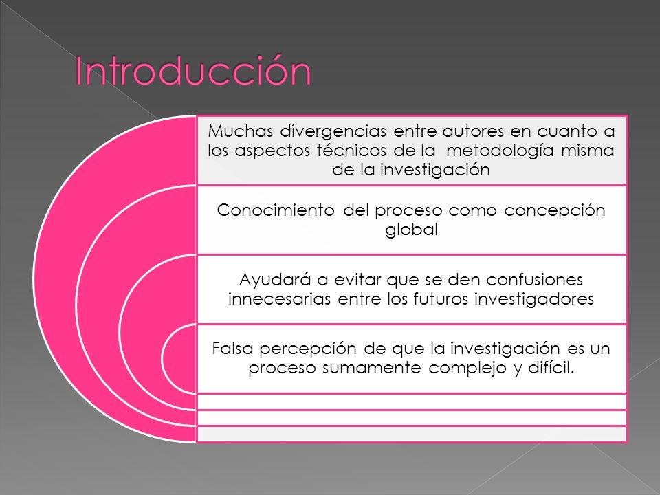 Conocimiento del proceso como concepción global