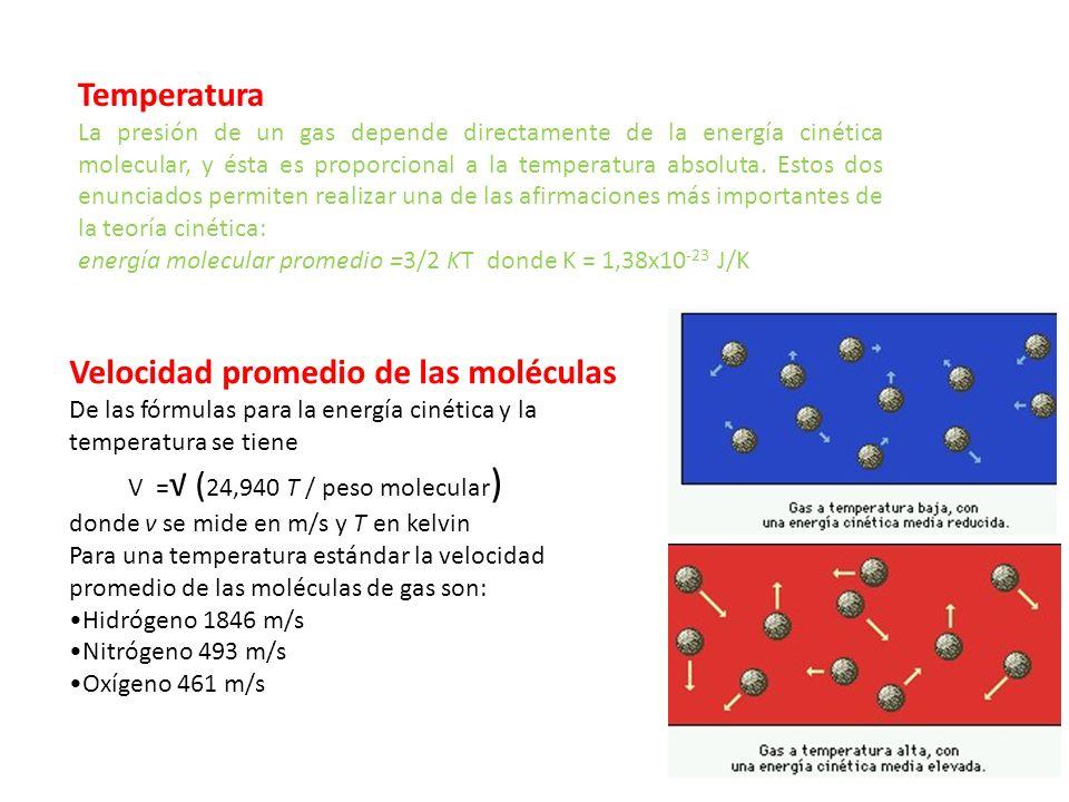 Velocidad promedio de las moléculas