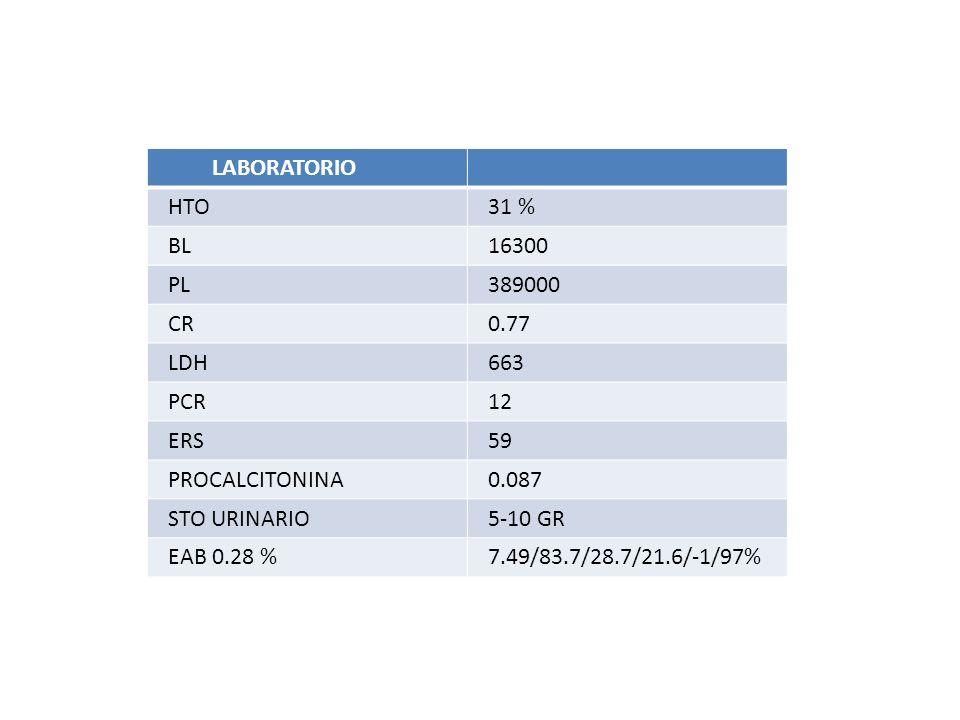 LABORATORIO HTO. 31 % BL. 16300. PL. 389000. CR. 0.77. LDH. 663. PCR. 12. ERS. 59. PROCALCITONINA.