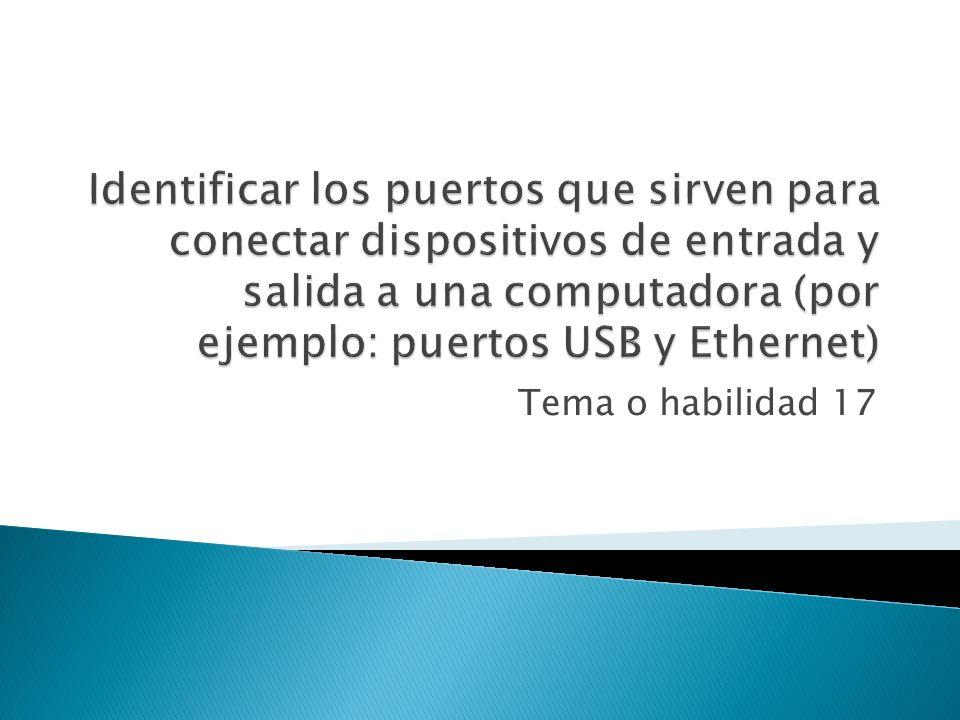 Identificar los puertos que sirven para conectar dispositivos de entrada y salida a una computadora (por ejemplo: puertos USB y Ethernet)