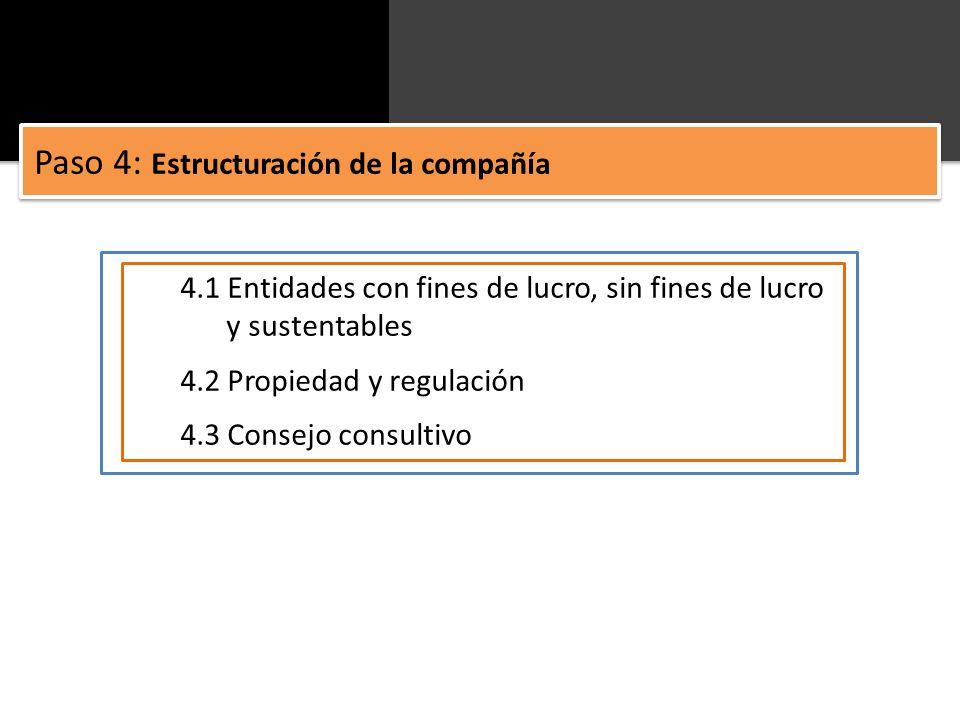 Paso 4: Estructuración de la compañía