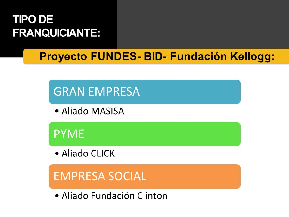 Proyecto FUNDES- BID- Fundación Kellogg: