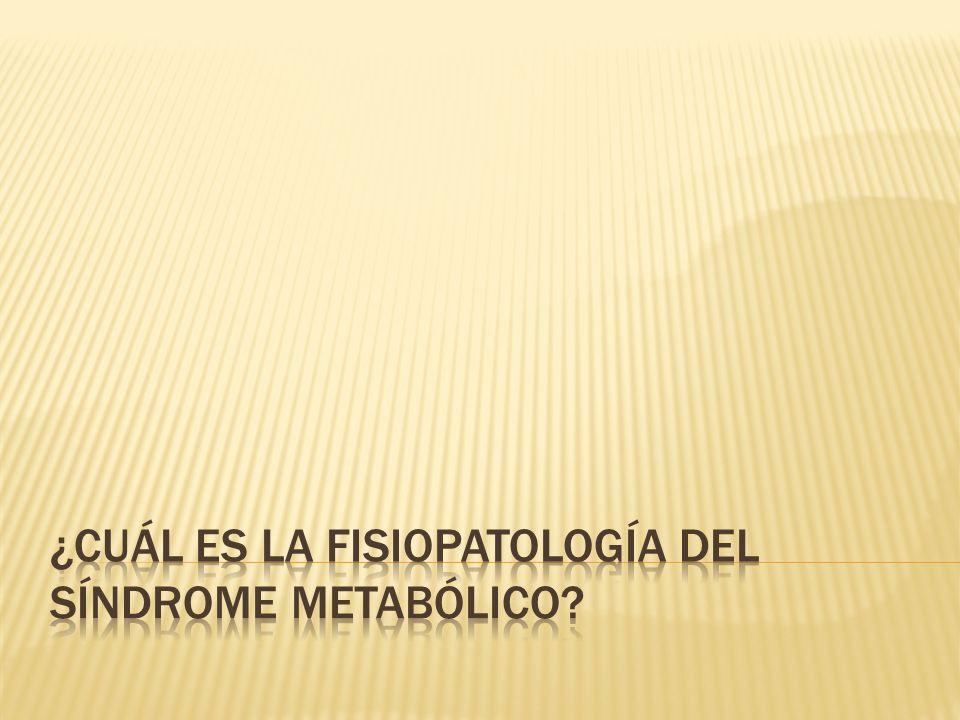 ¿Cuál es la fisiopatología del síndrome metabólico