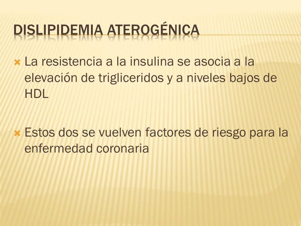 Dislipidemia Aterogénica