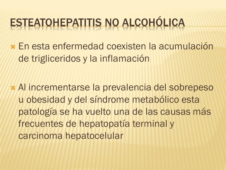 Esteatohepatitis no alcohólica