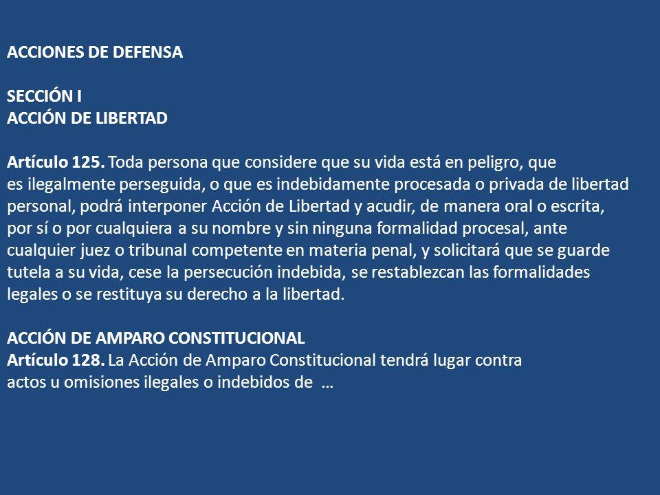ACCIONES DE DEFENSA SECCIÓN I ACCIÓN DE LIBERTAD Artículo 125