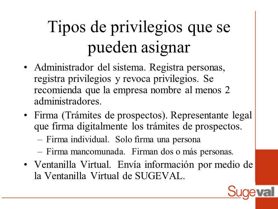 Tipos de privilegios que se pueden asignar