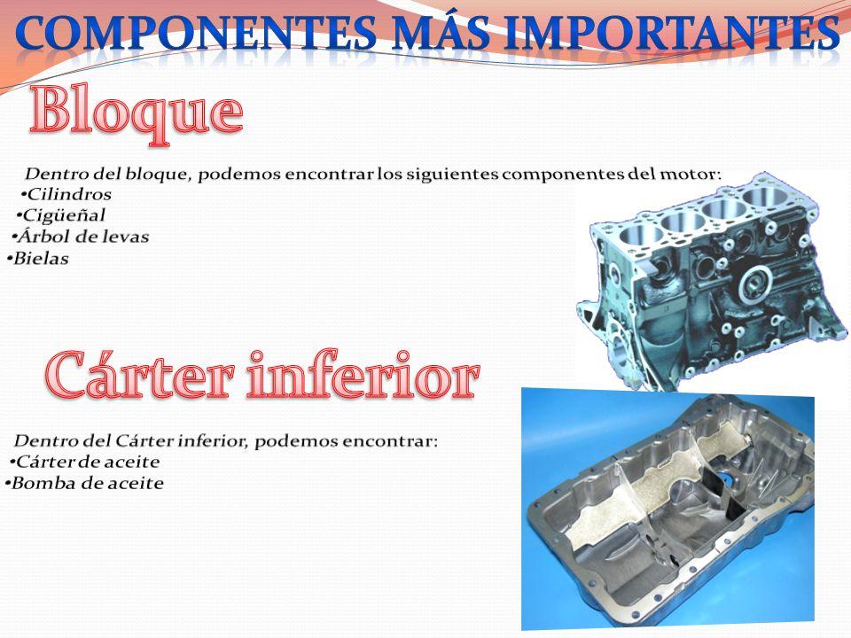 Componentes más importantes
