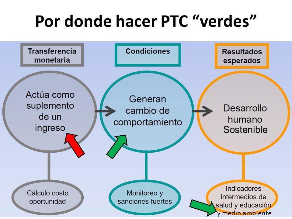 Por donde hacer PTC verdes