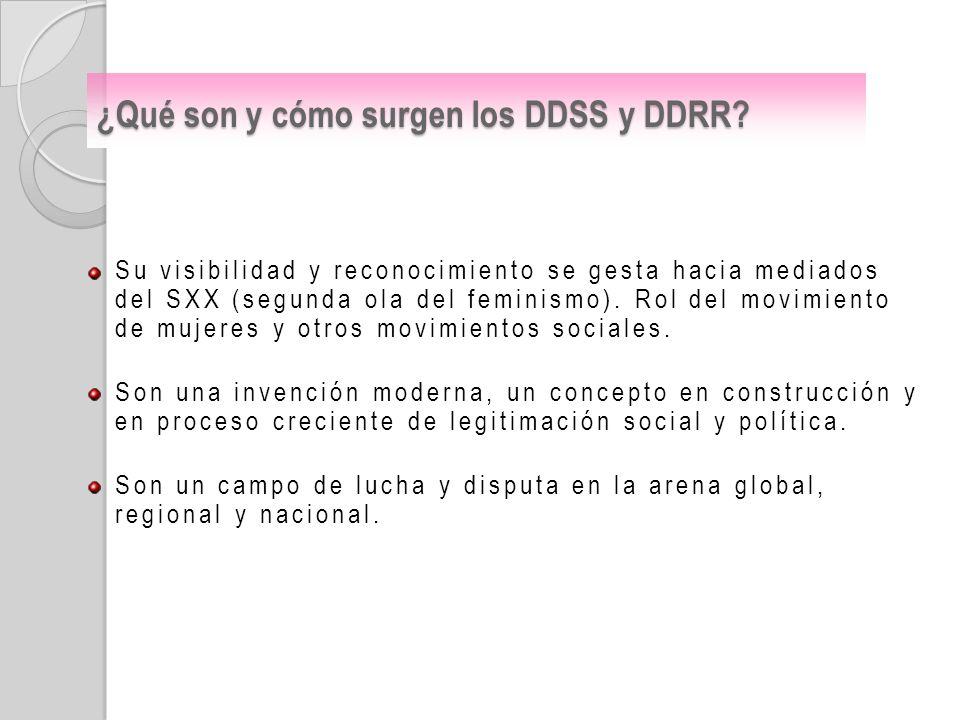 ¿Qué son y cómo surgen los DDSS y DDRR