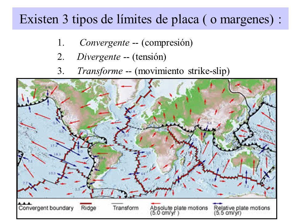 Existen 3 tipos de límites de placa ( o margenes) :