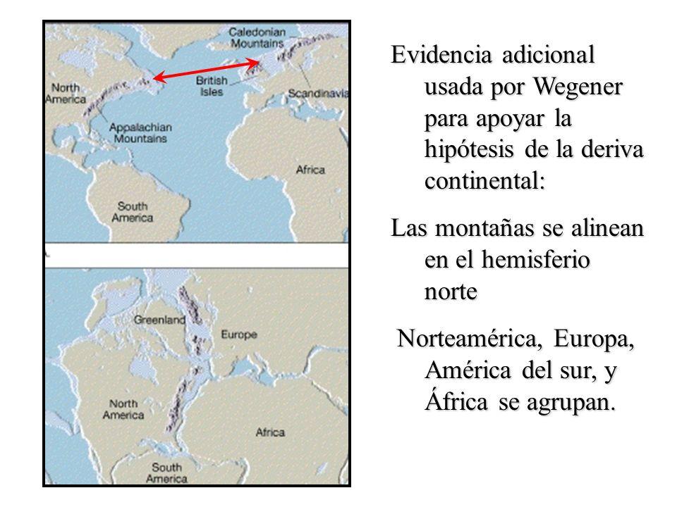 Evidencia adicional usada por Wegener para apoyar la hipótesis de la deriva continental: