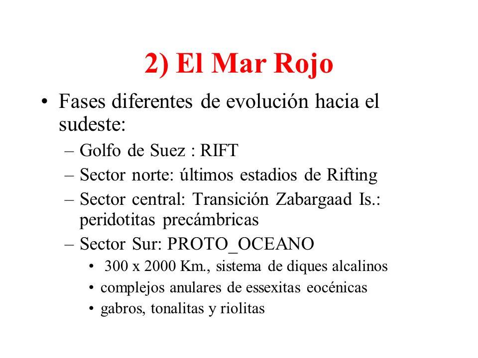 2) El Mar Rojo Fases diferentes de evolución hacia el sudeste: