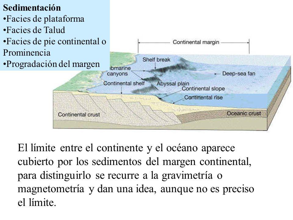 Sedimentación Facies de plataforma. Facies de Talud. Facies de pie continental o Prominencia. Progradación del margen.