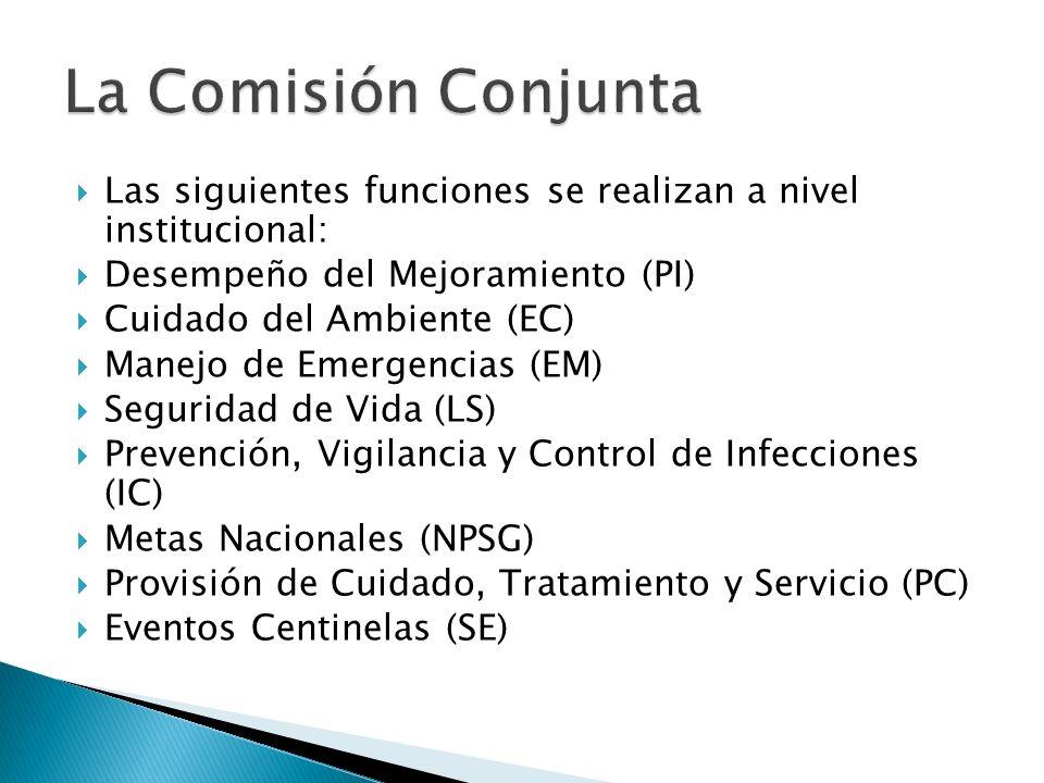 La Comisión Conjunta Las siguientes funciones se realizan a nivel institucional: Desempeño del Mejoramiento (PI)
