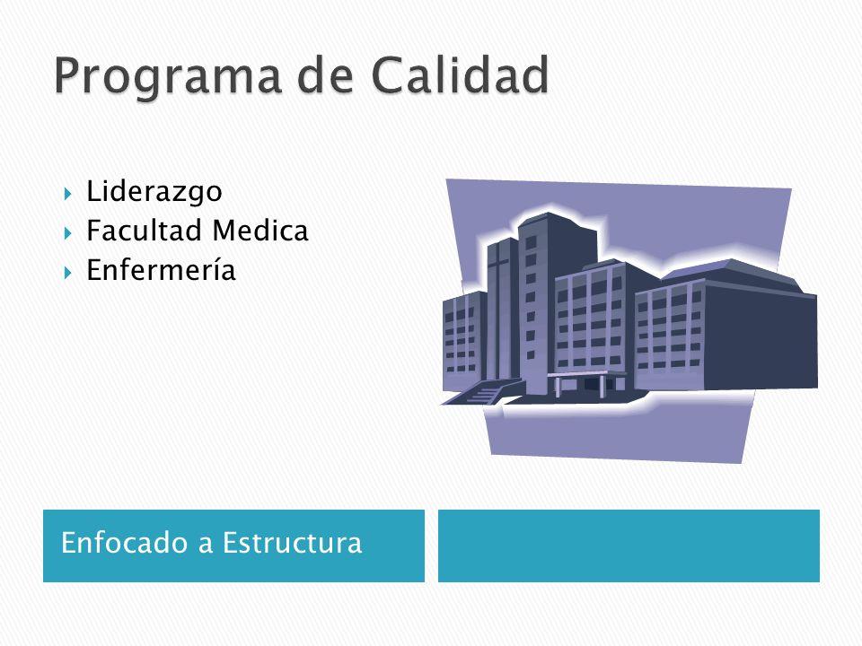Programa de Calidad Liderazgo Facultad Medica Enfermería