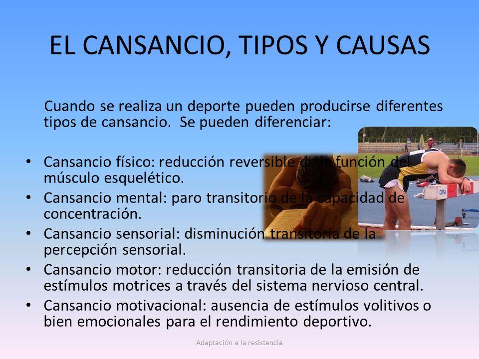 EL CANSANCIO, TIPOS Y CAUSAS