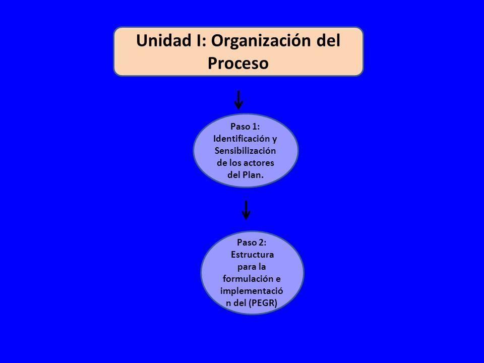 Unidad I: Organización del Proceso