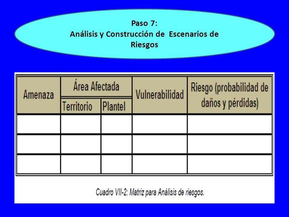 Paso 7: Análisis y Construcción de Escenarios de Riesgos