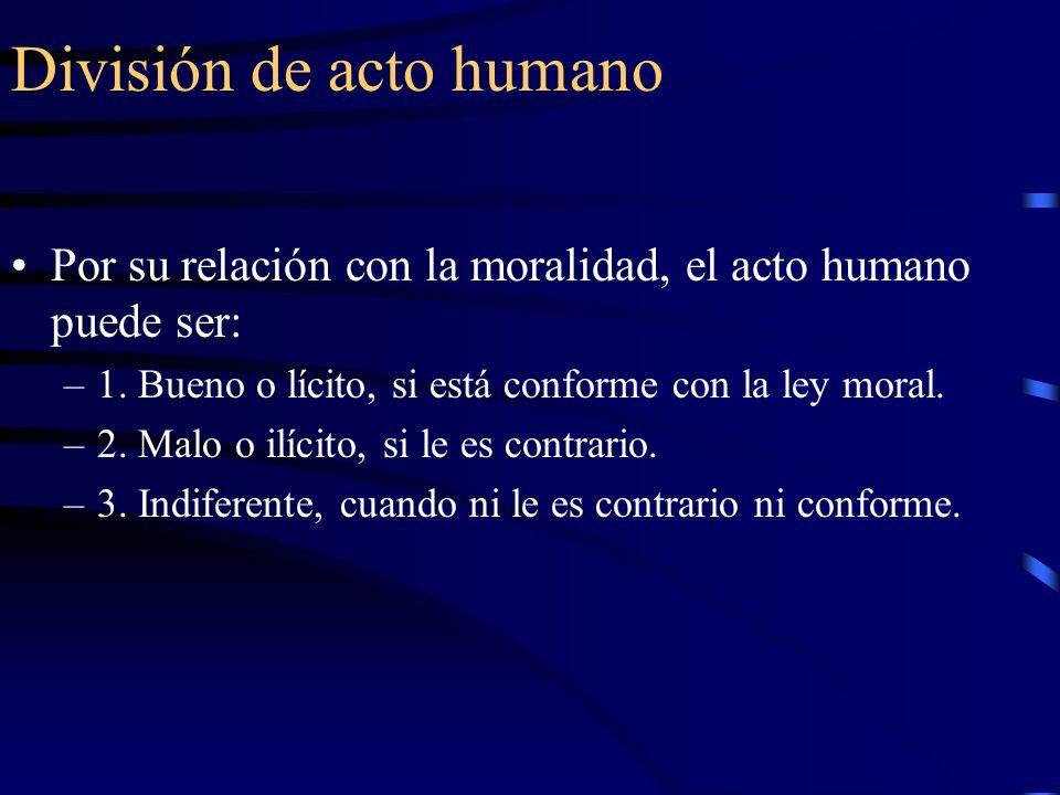 División de acto humano