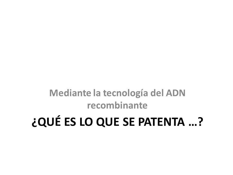 ¿Qué es lo que se patenta …