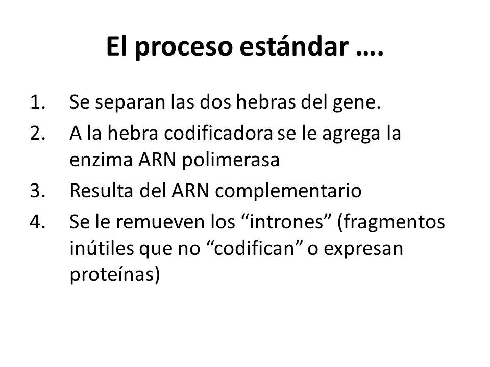 El proceso estándar …. Se separan las dos hebras del gene.