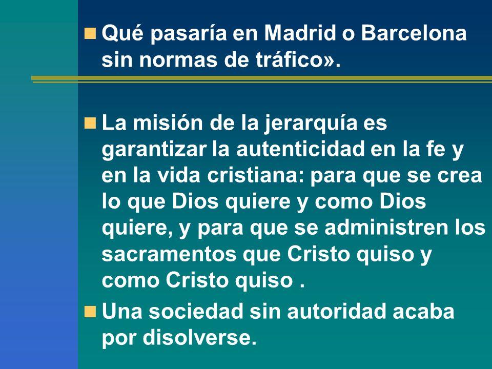 Qué pasaría en Madrid o Barcelona sin normas de tráfico».