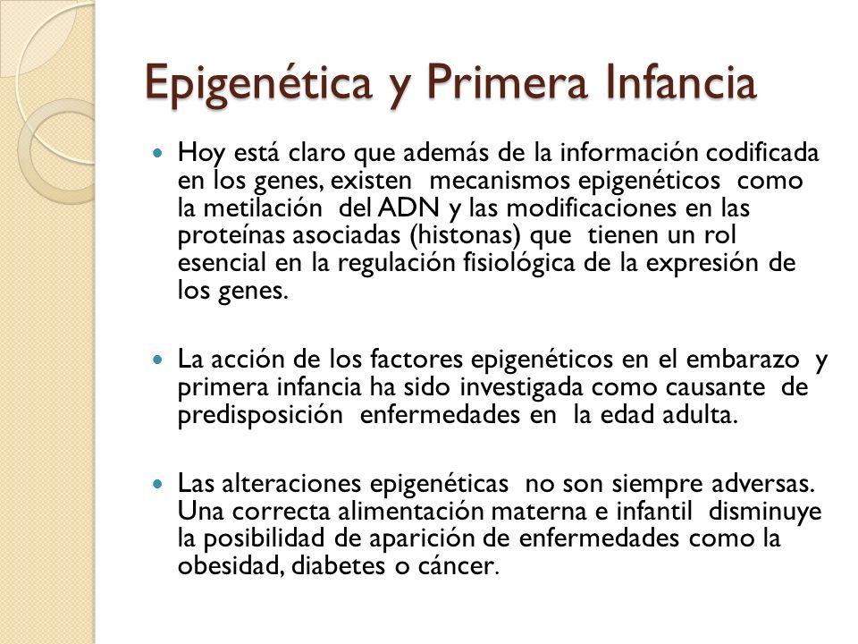 Epigenética y Primera Infancia