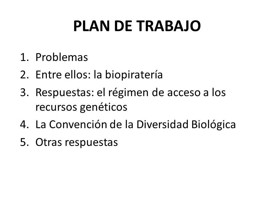 PLAN DE TRABAJO Problemas Entre ellos: la biopiratería