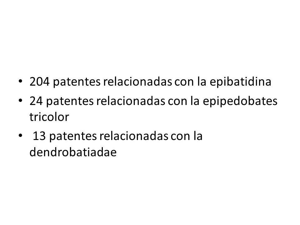 204 patentes relacionadas con la epibatidina
