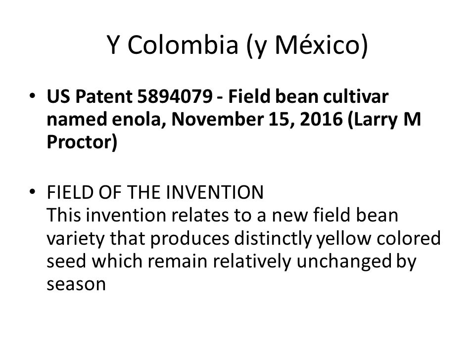 Y Colombia (y México) US Patent 5894079 - Field bean cultivar named enola, November 15, 2016 (Larry M Proctor)