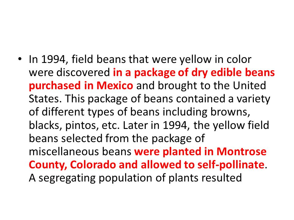 In 1994, field beans that were yellow in color were discovered in a package of dry edible beans purchased in Mexico and brought to the United States.