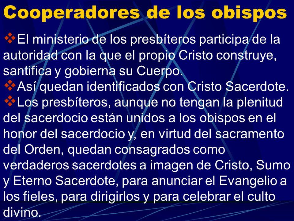 Cooperadores de los obispos