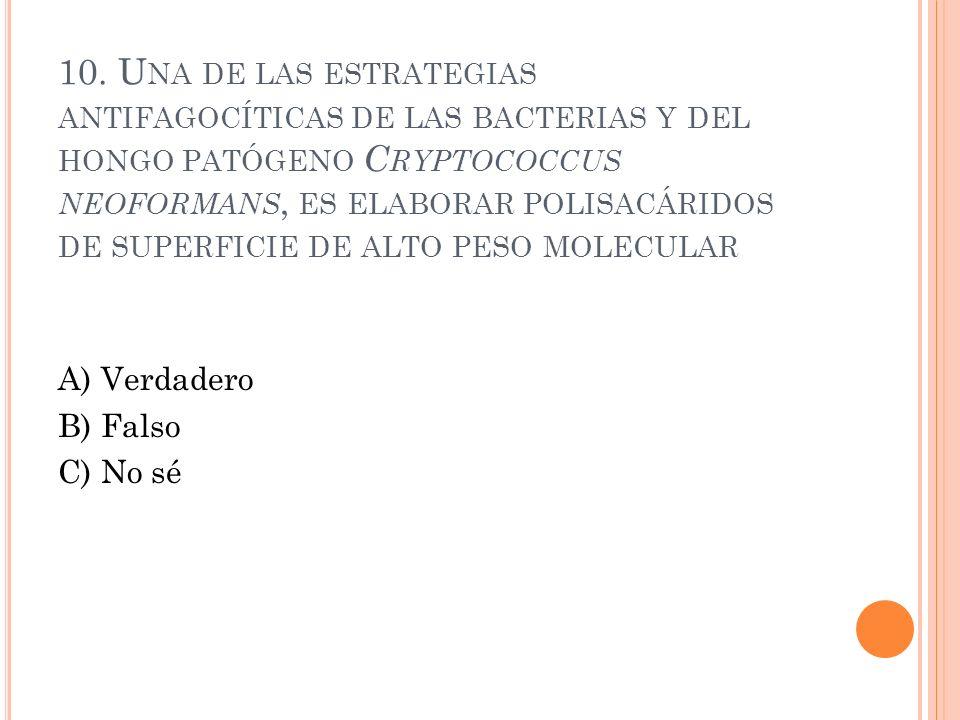 10. Una de las estrategias antifagocíticas de las bacterias y del hongo patógeno Cryptococcus neoformans, es elaborar polisacáridos de superficie de alto peso molecular