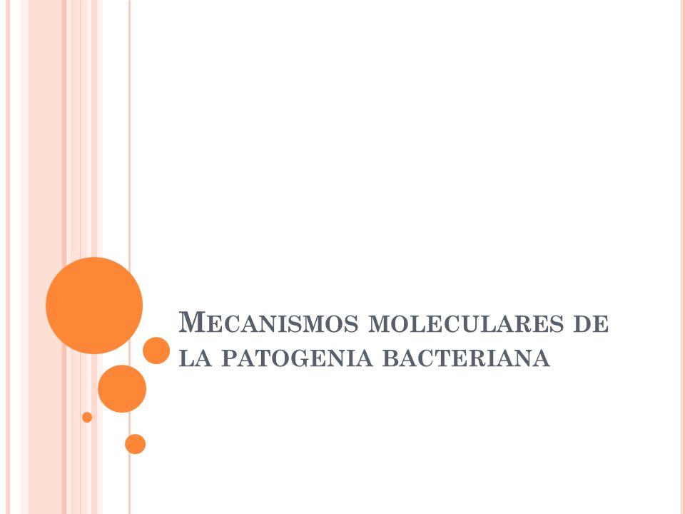 Mecanismos moleculares de la patogenia bacteriana