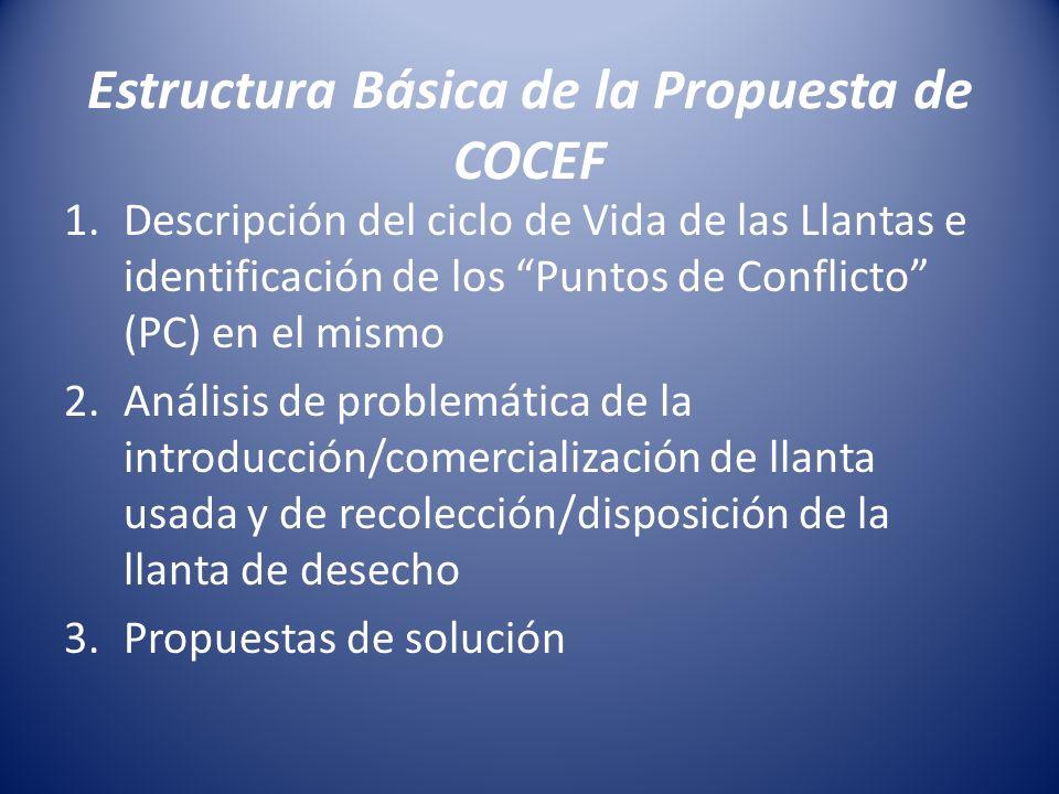 Estructura Básica de la Propuesta de COCEF