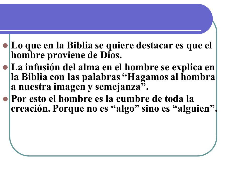 Lo que en la Biblia se quiere destacar es que el hombre proviene de Dios.