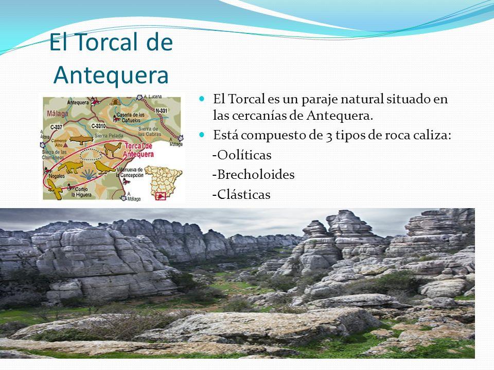 El Torcal de Antequera El Torcal es un paraje natural situado en las cercanías de Antequera. Está compuesto de 3 tipos de roca caliza: