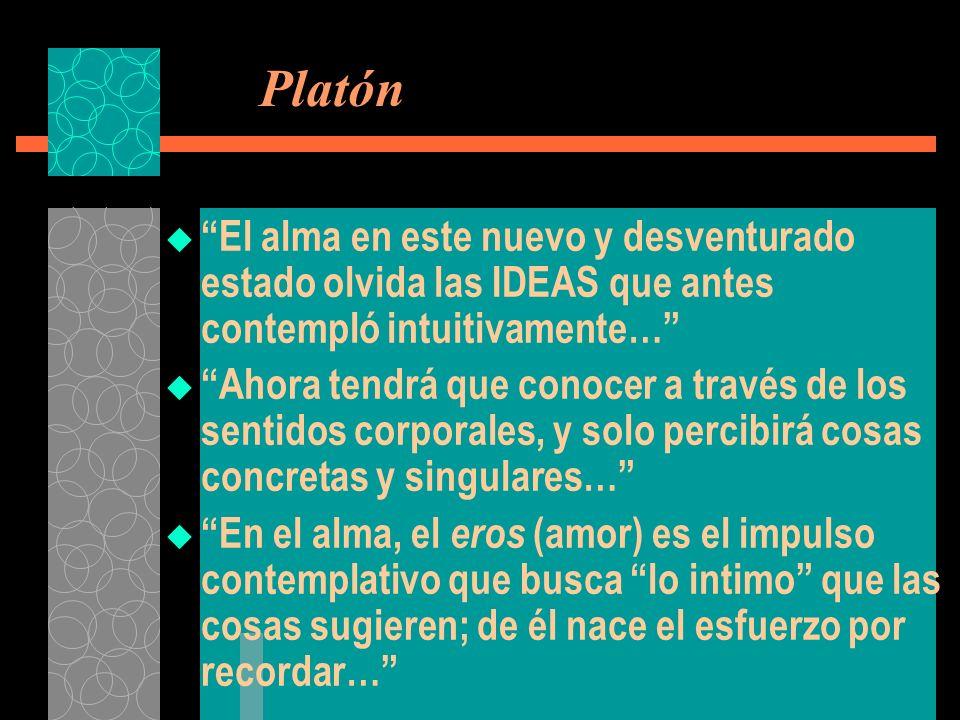 Platón El alma en este nuevo y desventurado estado olvida las IDEAS que antes contempló intuitivamente…